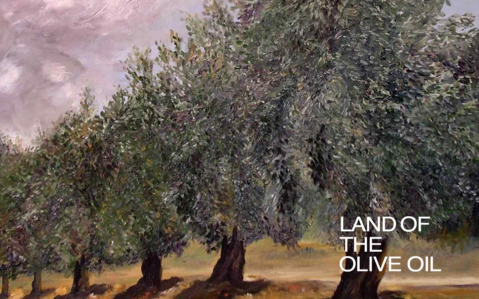 land of the olive oil